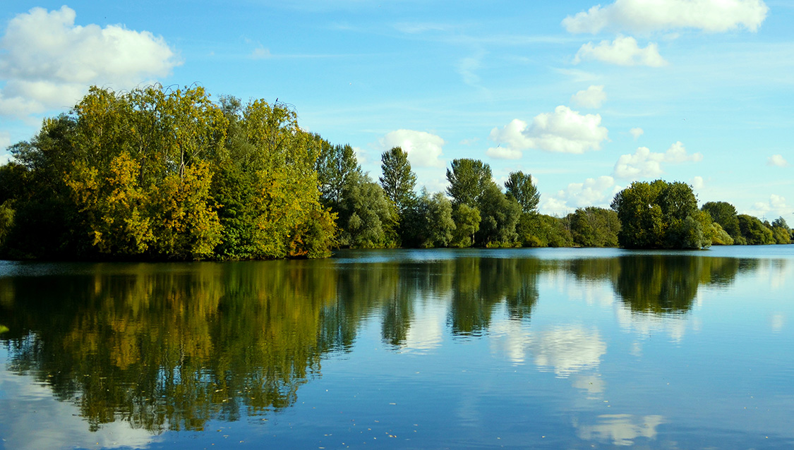 Delapre Park Lake