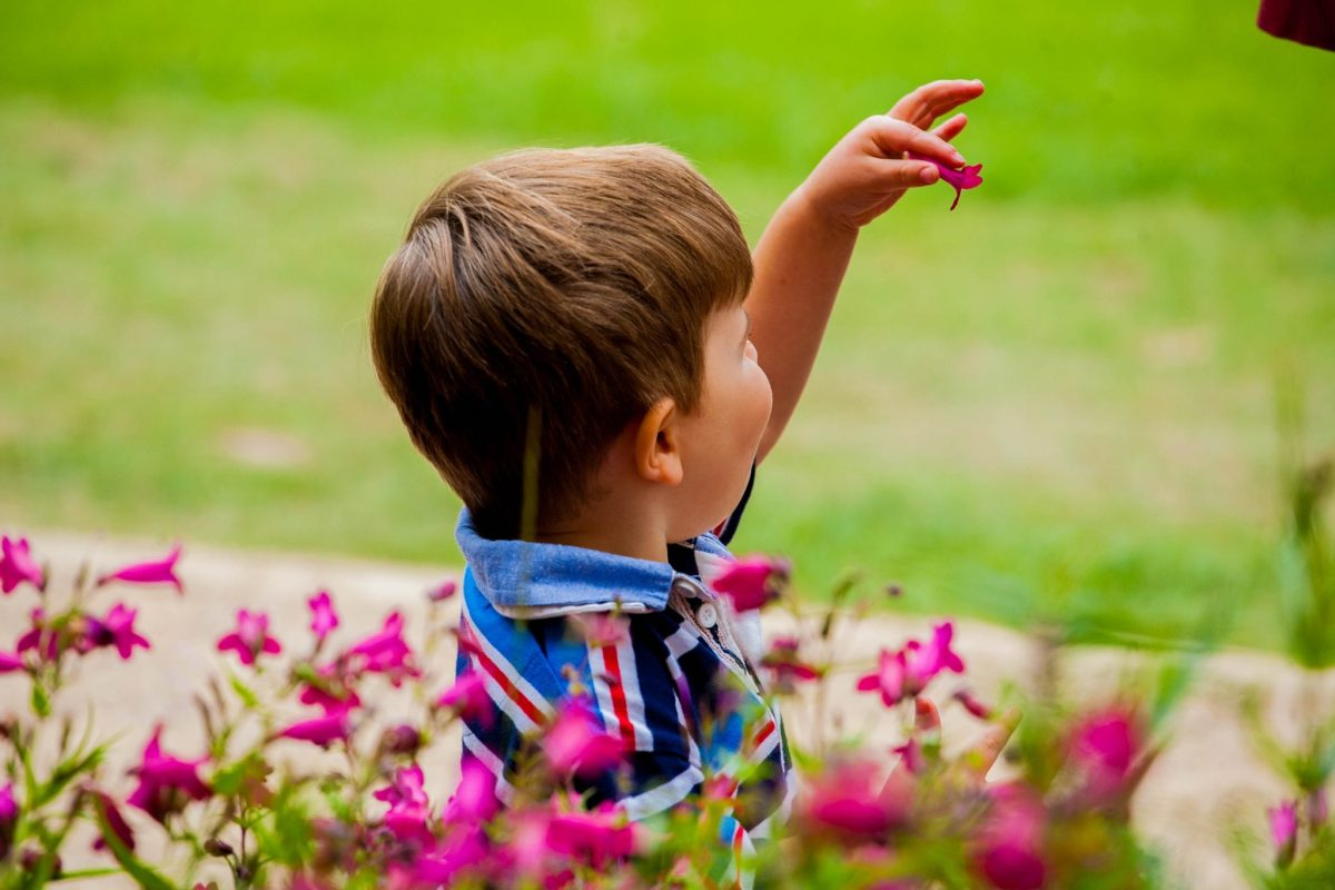 Child playing with flower at Delapré Abbey