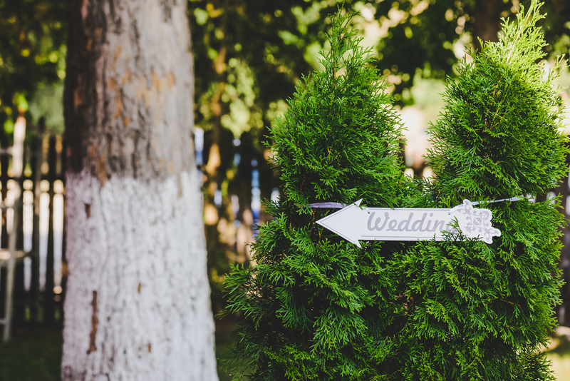 wedding on a wooden sign tied to a green bush